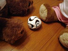 soccerbear1.jpg