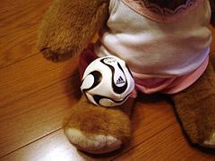 soccerbear2.jpg
