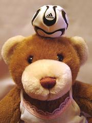soccerbear3.jpg